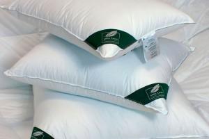 Пухо-перьевая подушка Anna Flaum Eis 70x70 средней упругости